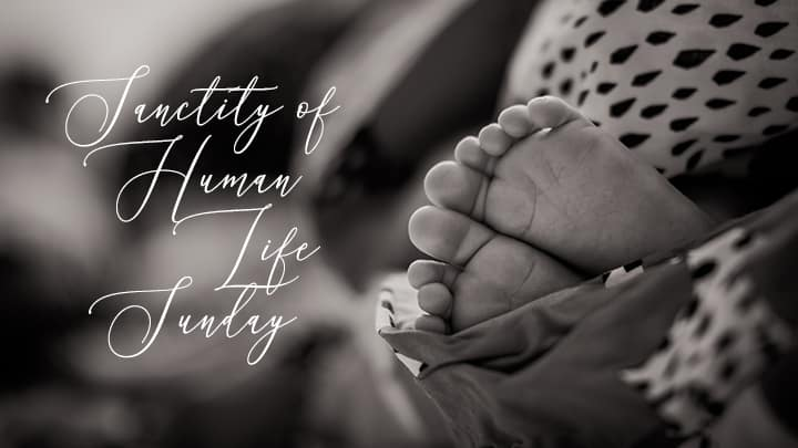 Sanctity of Human Life Sunday graphic